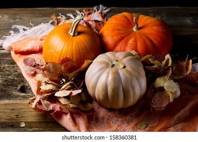 Three ripe pumpkin with autumn leaves of aspen