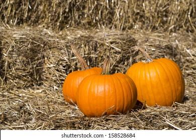three ripe pumpkins on haystack in the fall season