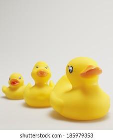 Three Rubber Ducks