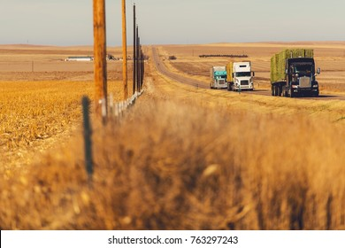 Three Semi Trucks Convoy on the Eastern Colorado Highway, United States. Trucking and Shipping Theme.