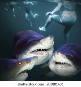 Three sharks have a fun.