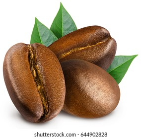 Three shiny fresh roasted coffee beans with leaves isolated on white background.