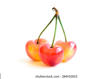 Three single Rainier cherries on isolated white background. They are grown in Yakima Valley, a prime agricultural area of Washington State and the largest variety of crops in the Pacific Northwest