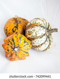 Three small fresh decorative pumpkins in studio on white background.
