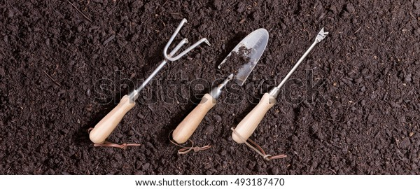 Three small garden tools on soil arranged in a neat row on a background of rich brown earth ready for transplanting seedlings in the spring with a rake, trowel and probe or small augur