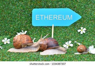 Three snails rushing for ETHEREUM