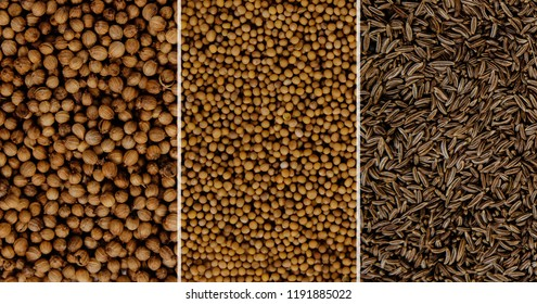 Three spices side by side view from above for mustard, coriander and cumin. Concept for stores selling spice seeds. Using spices for dishes, improving the taste.