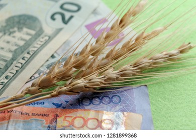Three spikelets of wheat lie on the banknotes of the United States and Kazakhstan. The concept of the cost of grain, trade relations of agriculture. Twenty five dollars and fifteen thousand tenge.