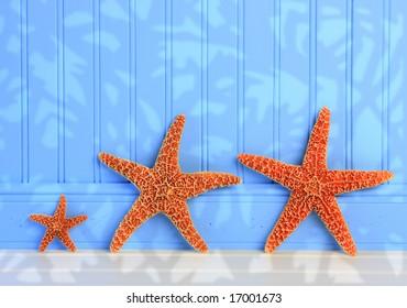 Three Starfish On Blue Panel Background