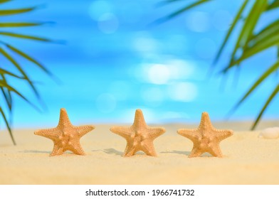 Three starfish stand in a row on the seashore on a sunny day. Summer vacation concept with copy space. Seastar on sandy beach against the ocean and palm leaves. Reflexes from the sun on blue water.