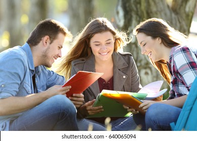 Three students learning reading notes together sitting on the grass in a park