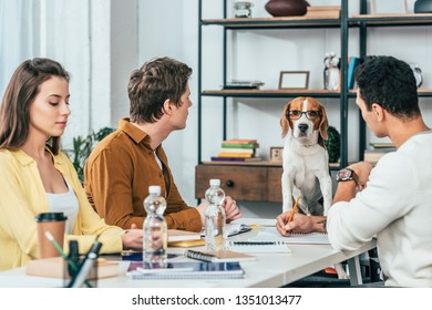 Three students with notebooks sitting at desk and looking at beagle dog in glasses