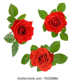 Three studio isolated beautiful red roses with leaves in a set