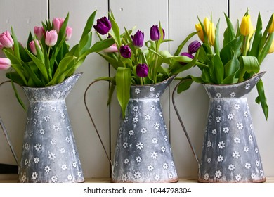 Three tall milk tins lined up next to each other each holding a different color bunch of tulips.