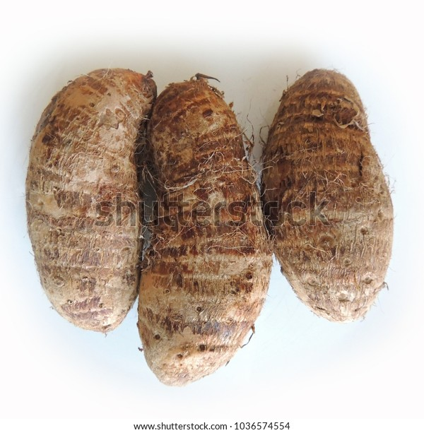 Three Taro Root Bulbs Stock Photo Edit Now 1036574554
