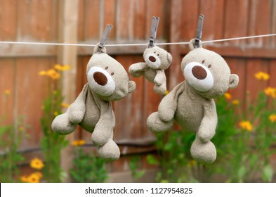 Three teddy bear family hanging on the clothesline in back garden in hot sunny day on summer, Family of teddy bear
