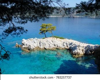 Three trees of Amarandos on Skopelos island, mamma mia movie location