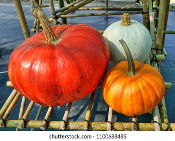 Three varieties of pumpkins are on sale at an outdoor market