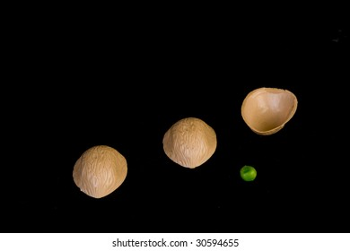 Three walnuts and a green pea on a black background.  The Shell game.
