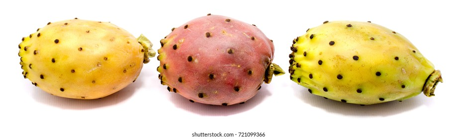 Three whole prickly pears, orange, green and yellow opuntia in row, isolated on white background