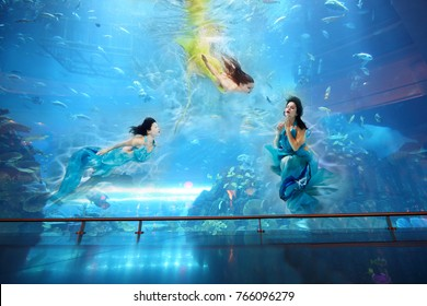 Three women in dresses swim underwater in big aquarium with fishes, collage with two models