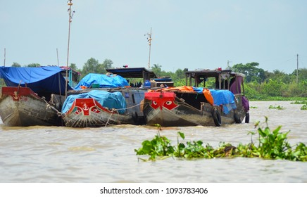 Three wooden boats are moored together on the Mekong Delta, Vietnam. Their prows  are painted red and decorated with a set of eyes. Green water plants are floating on the muddy water. The sky is blue