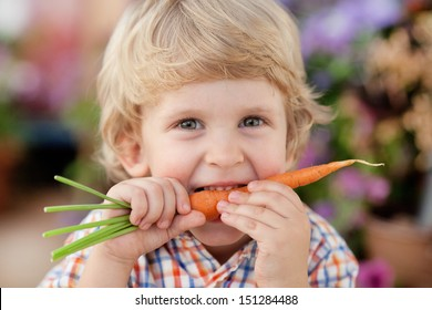 Three years old boy eating fresh carrot.