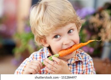 Three years old boy eating fresh carrot.
