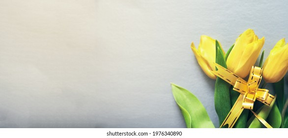 Three yellow fresh tulips on a silver grey background with a yellow ribbon and copy space. Concept of holiday, March 8, International womans day. Banner with copy space. Colors of the 2021 year