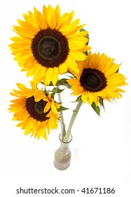 Three yellow sunflowers in vase isolated over white