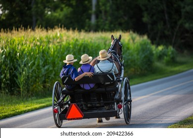 Three young Amish men in open buggy going down country road in rural Pennsylvania.