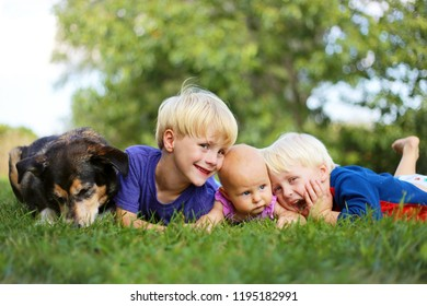 Three young siblings: a young child, his little brother and his baby sister are relaxing outside in the grass with their adopted German Shepherd dog on a summer day.