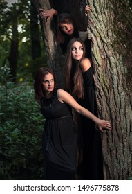 Three young women with long hair in suits of witches in forest. Halloween time.