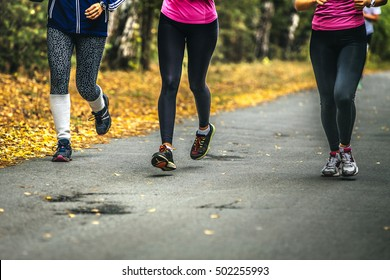 three young women runners sports in autumn forest. physical activity in nature