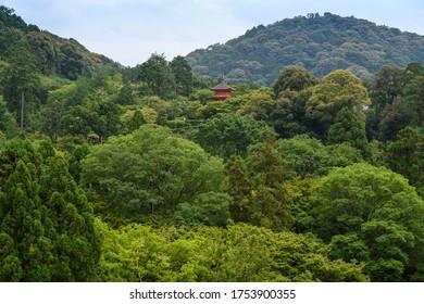 清水寺の子安三重塔 – 京都