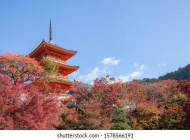 Three-story pagoda in Kiyomizu-dera temple and fall foliage
