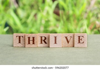 thrive. words on wood tiles with thriving green grass in the background. concept.