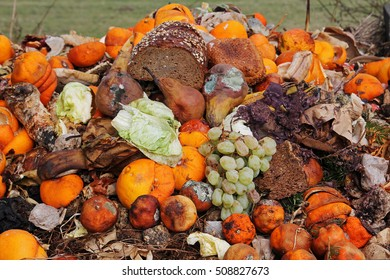 Thrown away fruit and bread on a garbage heap