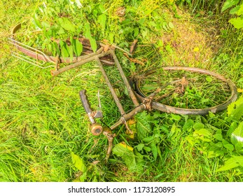 thrown away old rusty bike in the park on a grass field