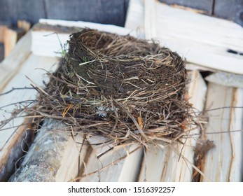 thrush nest. on wood for the stove