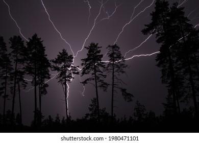 Thunderbolt, lightning bolt in the night sky