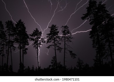 Thunderbolt in the night sky