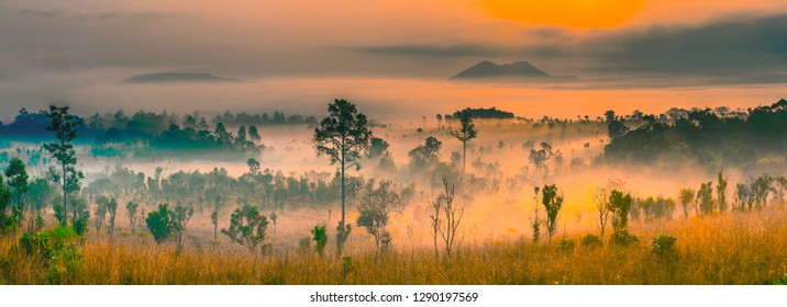 Thung Salaeng Luang national park of Thailand, mountain view with sea of fog and forest