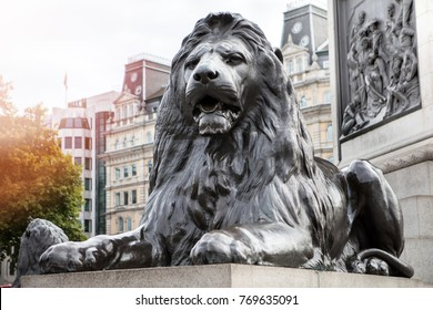 Thursday, October 5, 2017 Lion at trafalgar square london , united kingdom