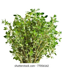 thyme herb isolated on white