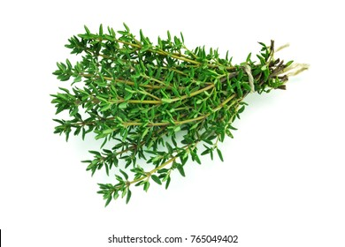 Thyme Isolated, close up of green aromatic herb for cooking on white background