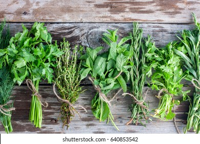 Thyme, rosemary, parsley, coriander, dill, tarragon on a wooden table, top view