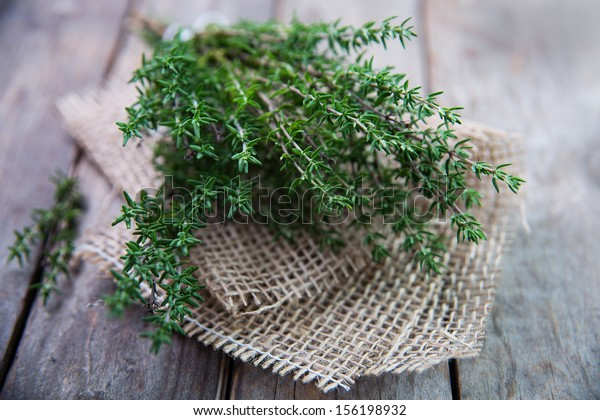 Thyme , Selective focus