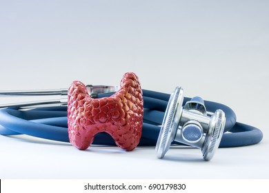 Thyroid gland near the stethoscope as a symbol of a health of organ, care, diagnostics, medical testing, treatment and prevention of diseases and pathology of thyroid as endocrine organ concept photo