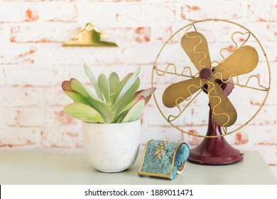 Kalanchoë Thyrsiflora (flapjack) next to vintage red and gold fan in front of red brick background.